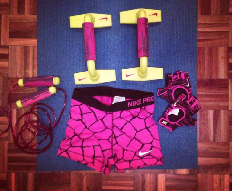 Soy fitster